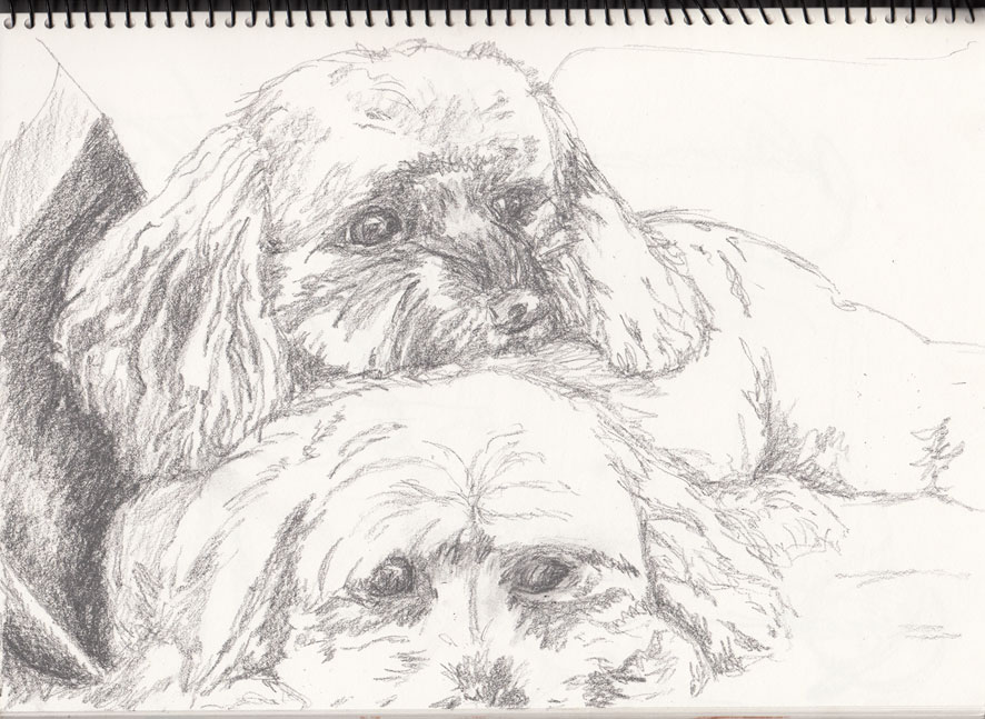 Olga's Pooches (Graphite Sketch)