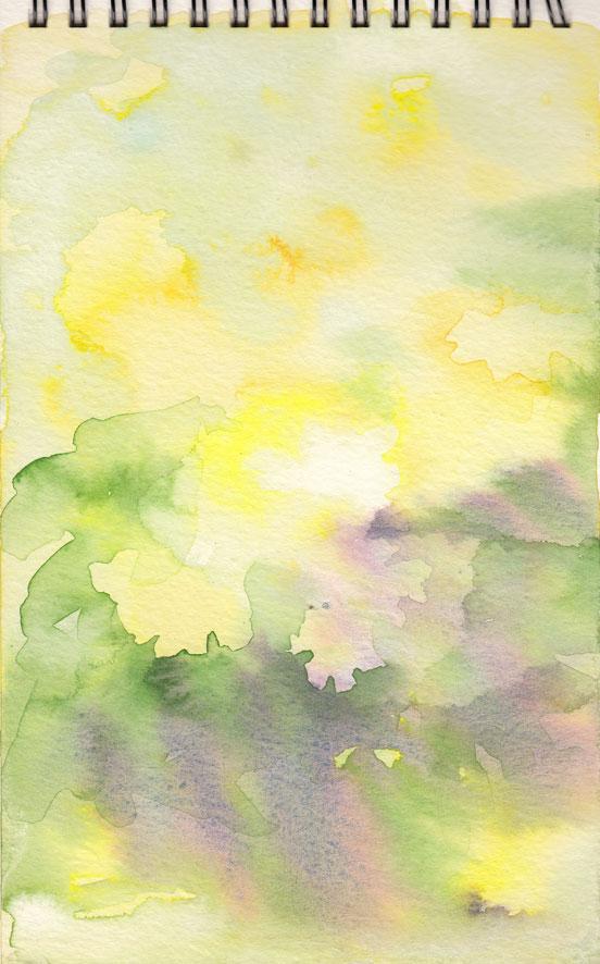 Primroses (watercolour)