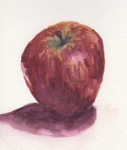 Red Delicious sketch (watercolour)