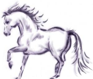 Horse sketch (Photoshop)