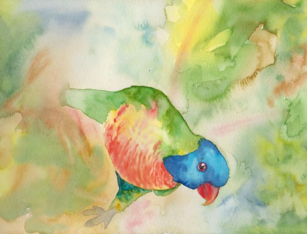 Rainbow Lorikeet (Watercolour)