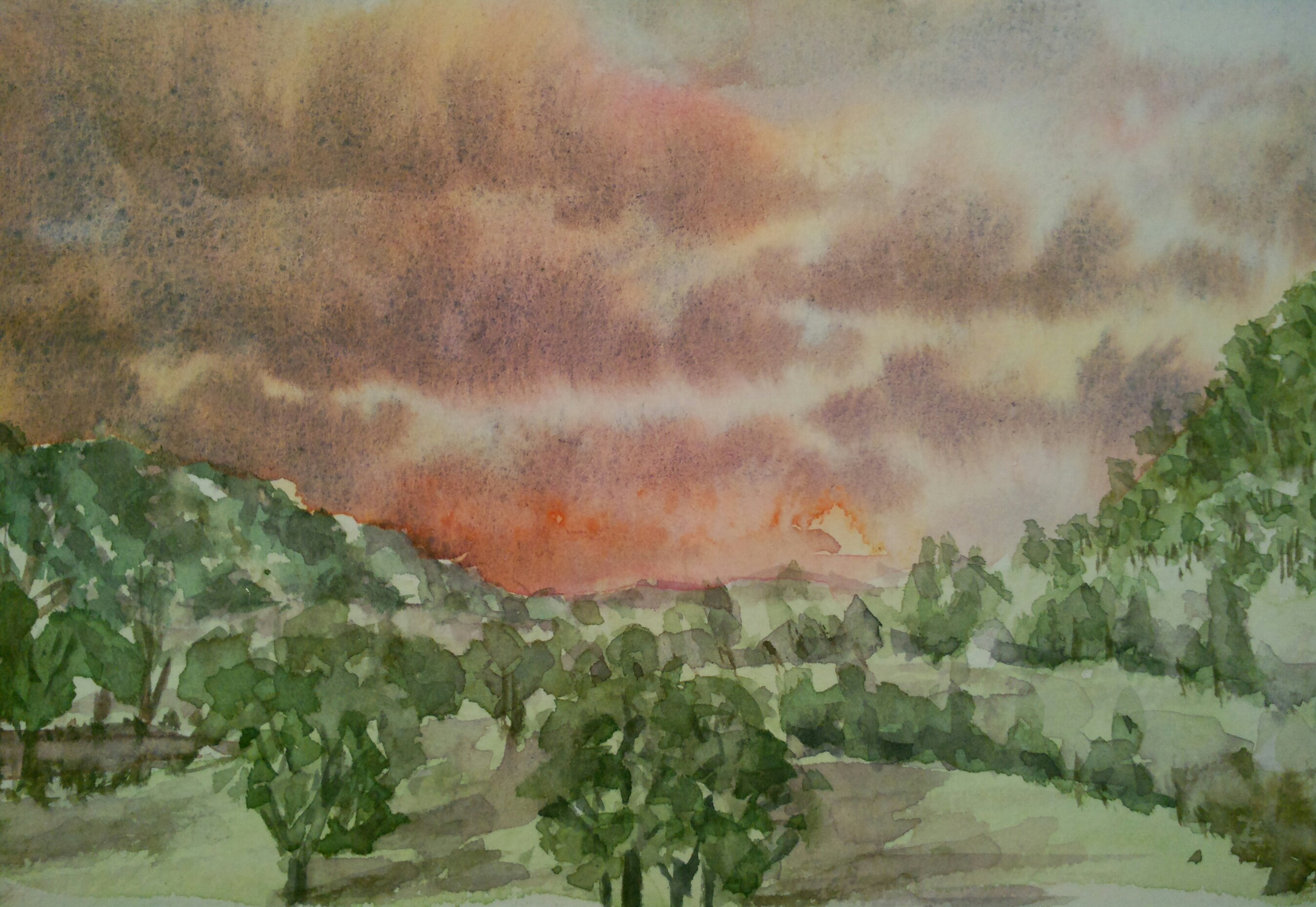 Hunter Valley View (Watercolour)