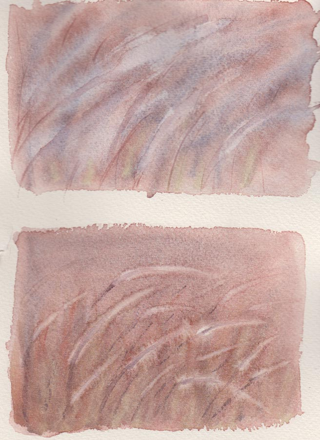 grasses 1st & 2nd Attempt (Watercolour)