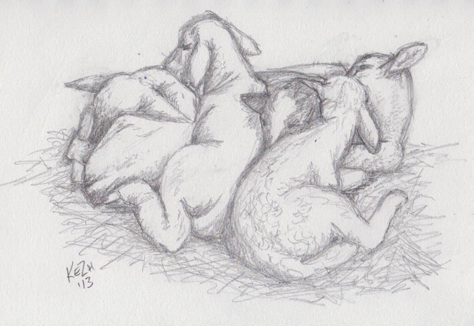 Lamb Snuggle (Pencil)