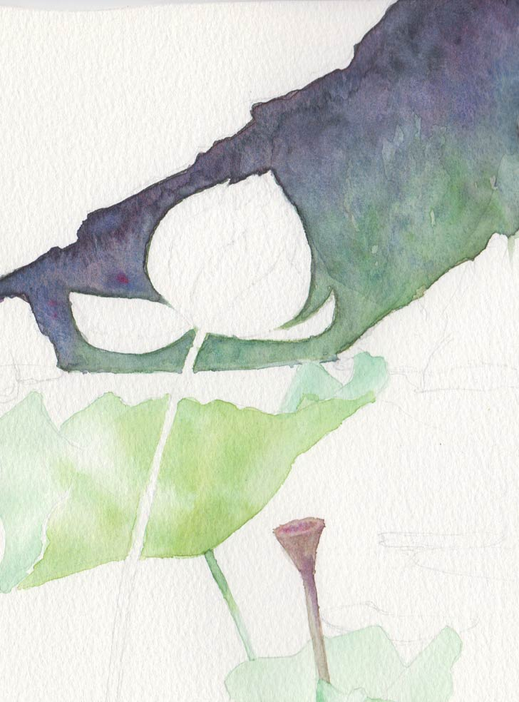 Lotus & Rocks (Watercolour)
