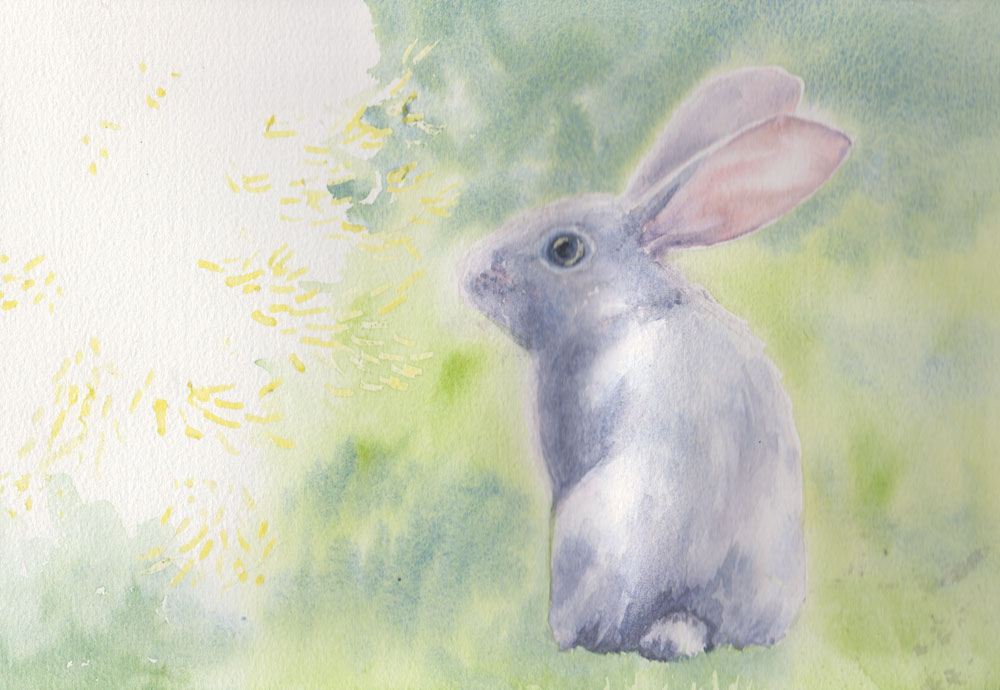 Baby Rabbit (Watercolour)