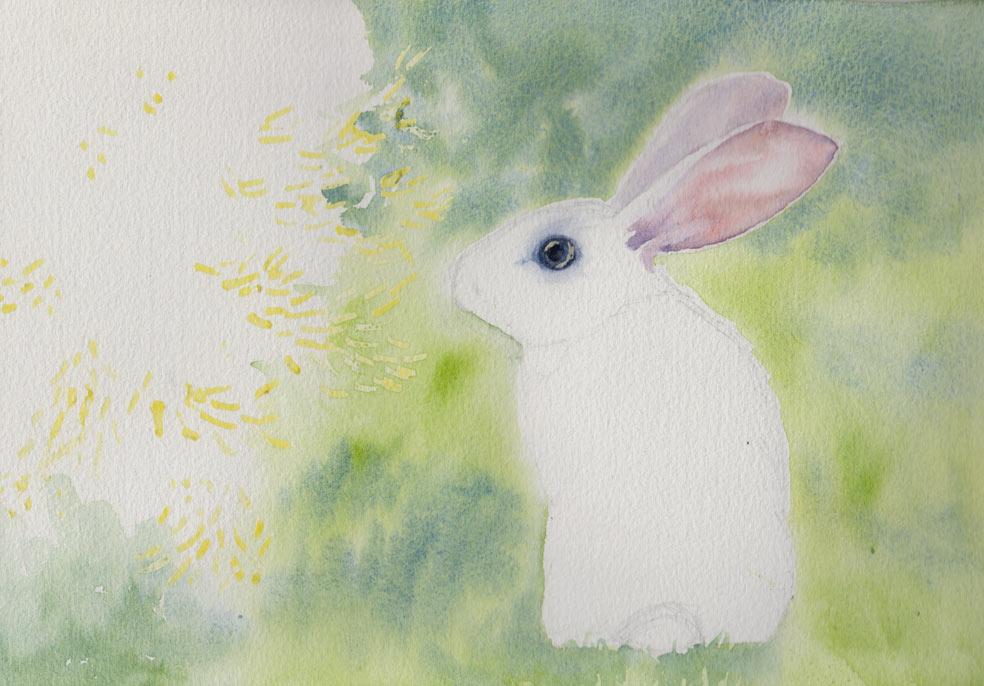 Baby Rabbit (Watercolour)