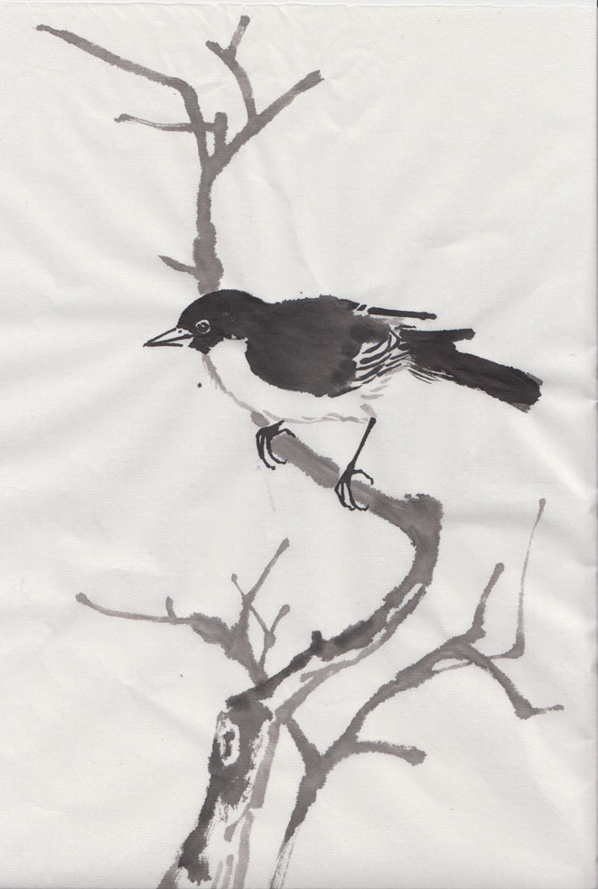 Bird (Chinese Spontaneous Style)