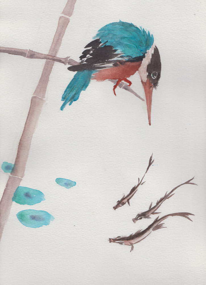 Hungry Kingfisher (Watercolour)