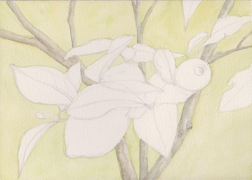 Lemons (Watercolour)