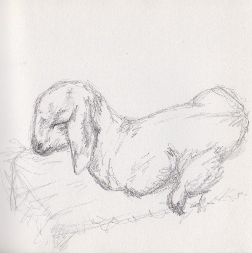 Sleeping Kid (Pencil)