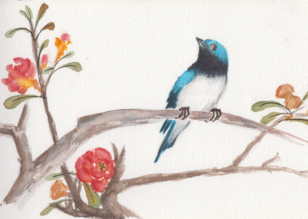 Blue Swallow (Watercolour)