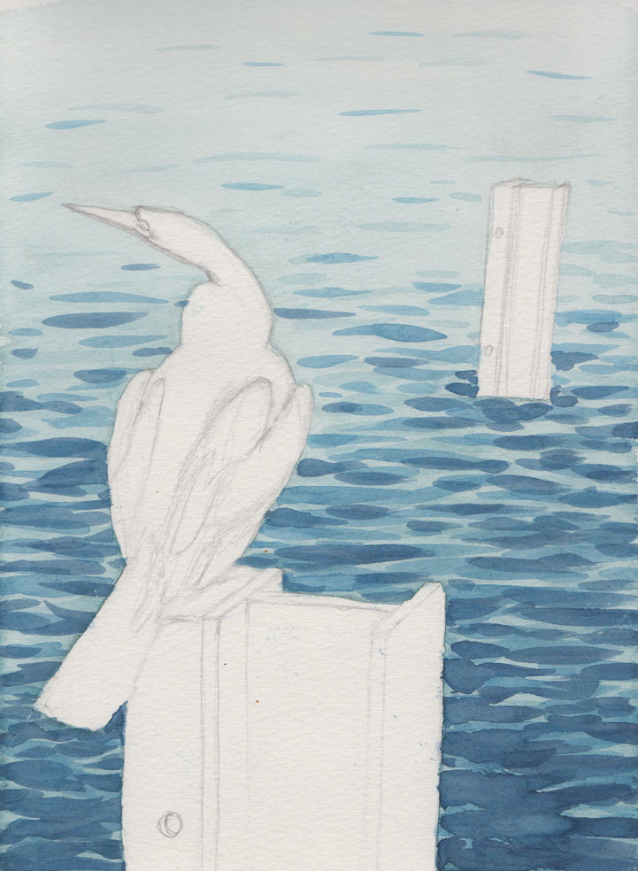 Cormorant on Post (Watercolour)