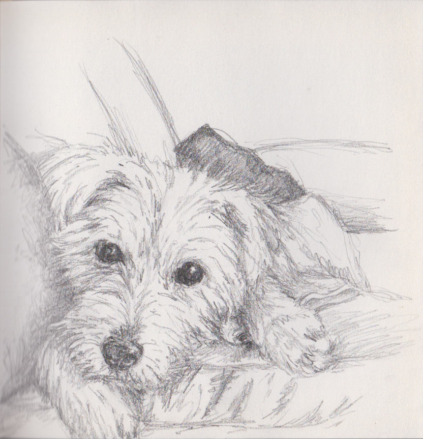 Sneaking on to the Sofa (Graphite Stick)