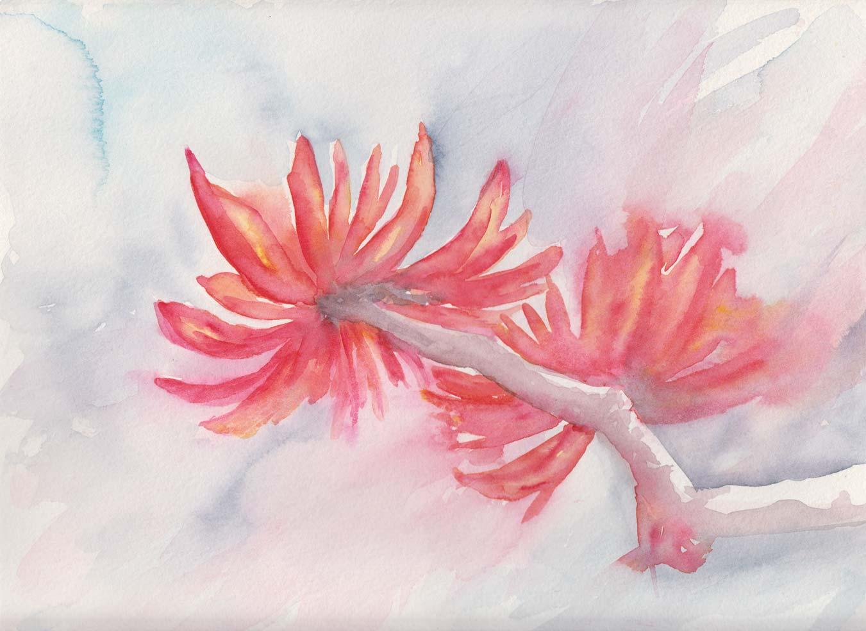 Flame Tree (Watercolour)