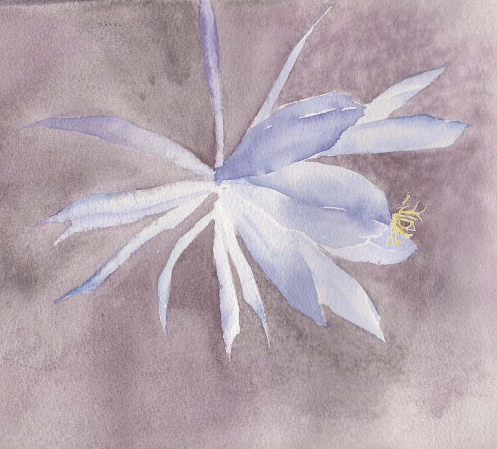 Blue Flower (Watercolour)