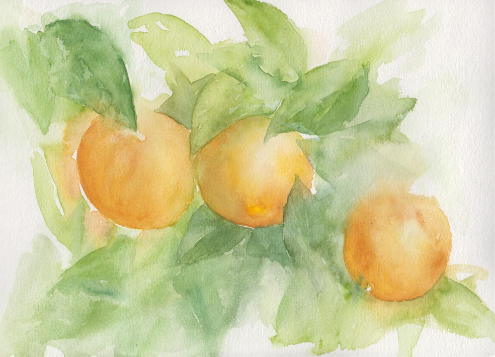 Oranges (Watercolour)