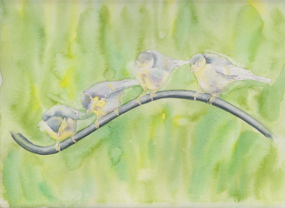 Baby Bluetits (Watercolour)