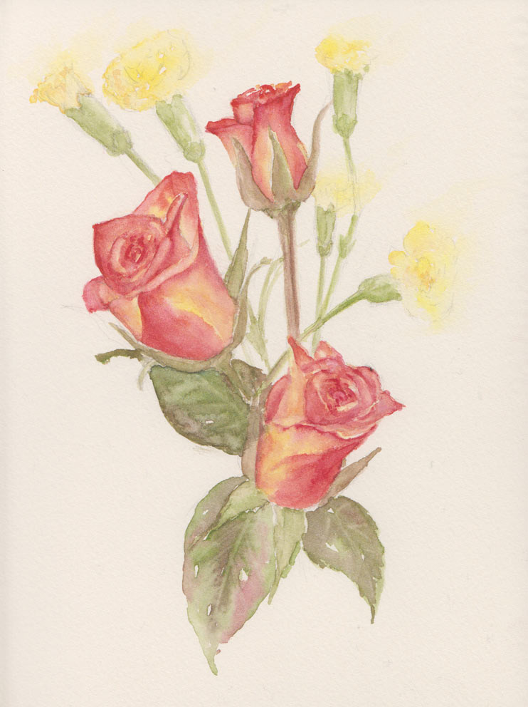 Carnations & Roses (Watercolour)