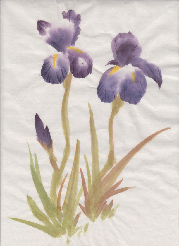 Irises (Chinese Spontaneous Style)
