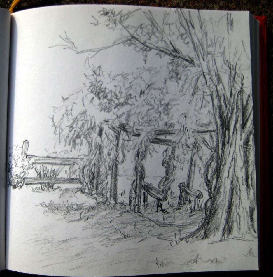 Hampden Cottage Garden (Pencil)