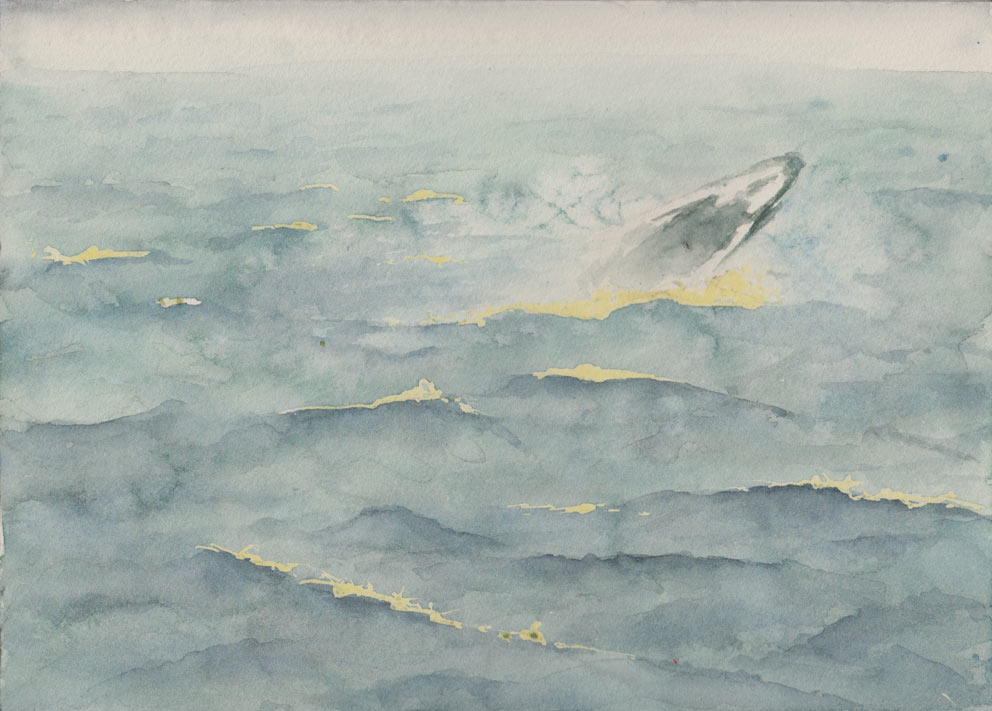 Humpback Whale (Watercolour)