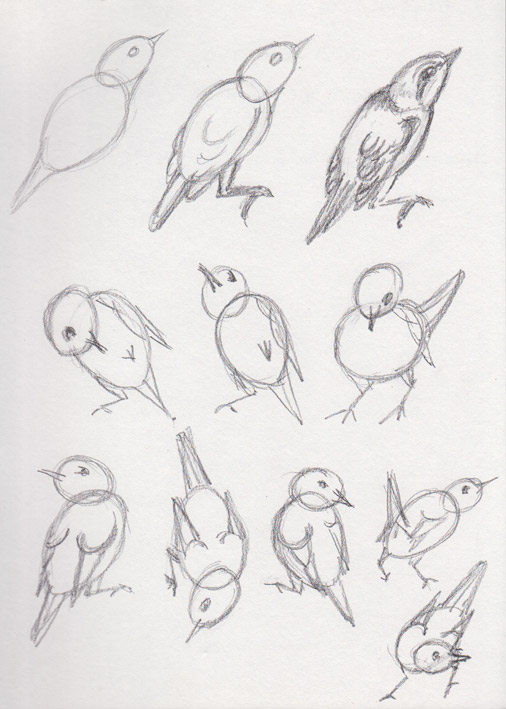 Bird Shapes (pencil)