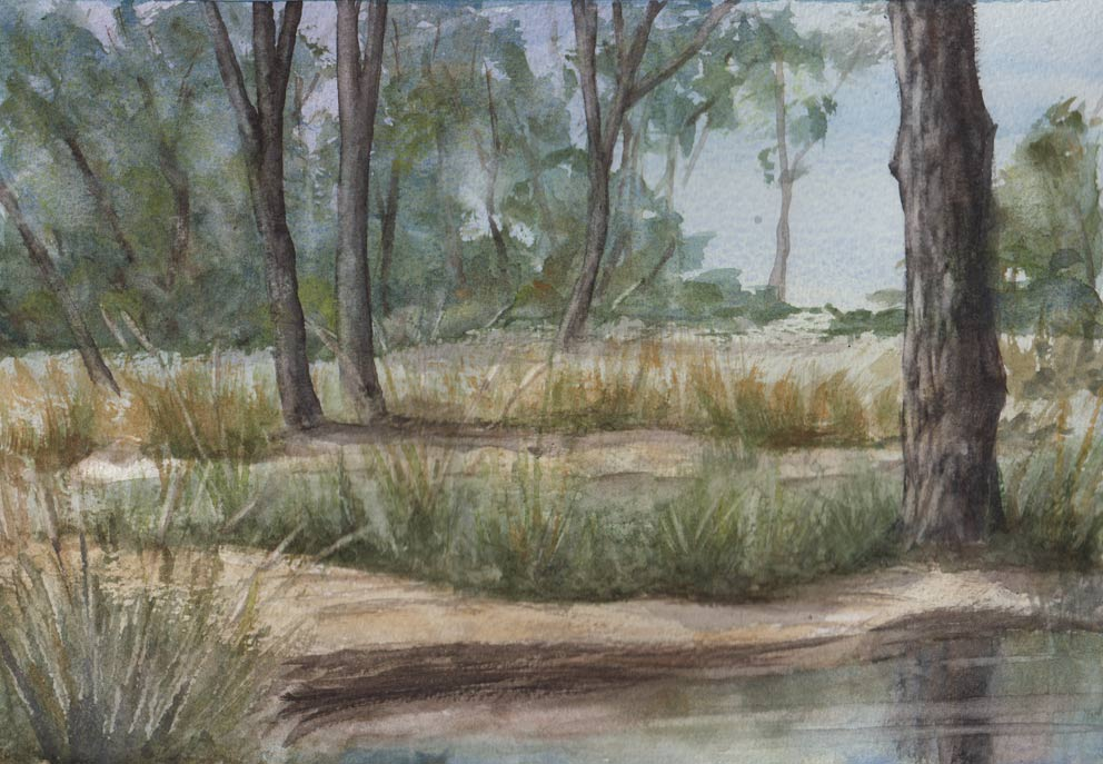 Bush Landscape (Watercolour)