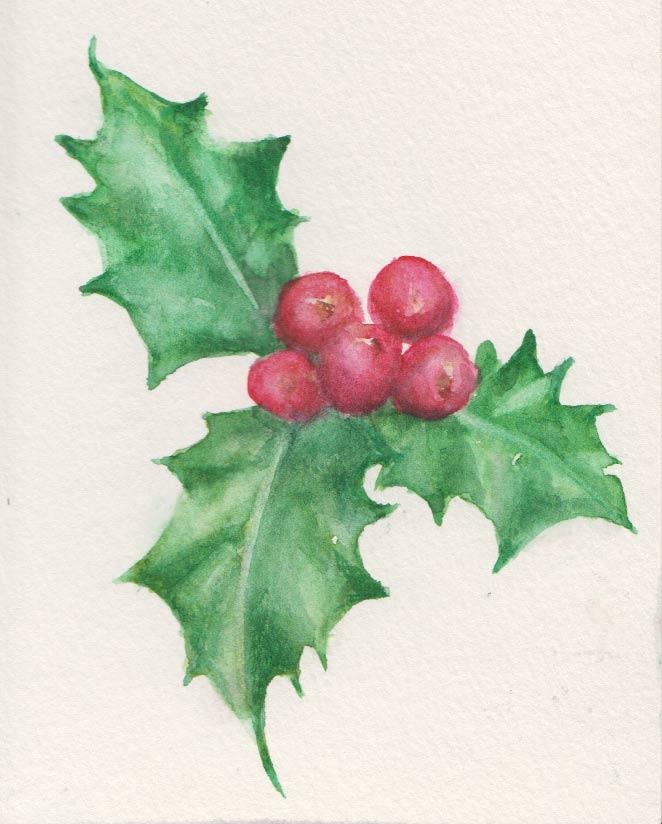 Festive Holly Bunch (Watercolour)