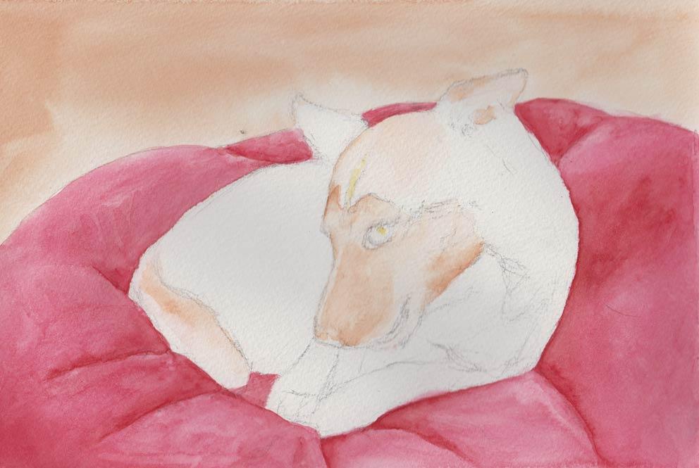 A Bone to Pick (Watercolour)