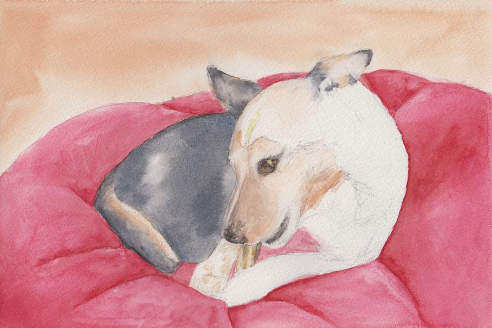 A Bone to Pick (Watercolour)