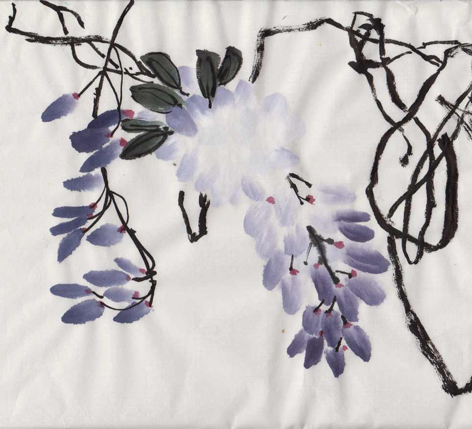 Wisteria (Chinese Spontaneous Style)