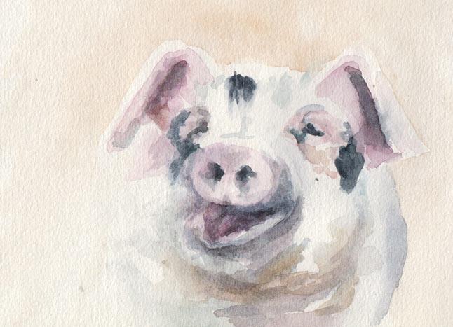 Fat Piggy (Watercolour)
