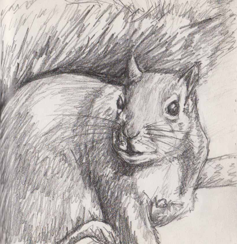 Take Home Dinner (Graphite)