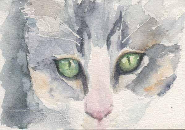 Cat Sketch (Watercolour)