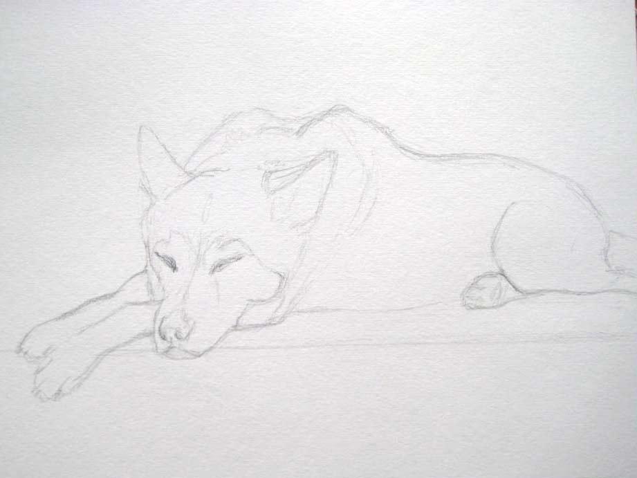 Snoozing (Watercolour)