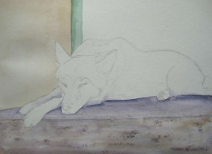 Snoozing (Watercolour)