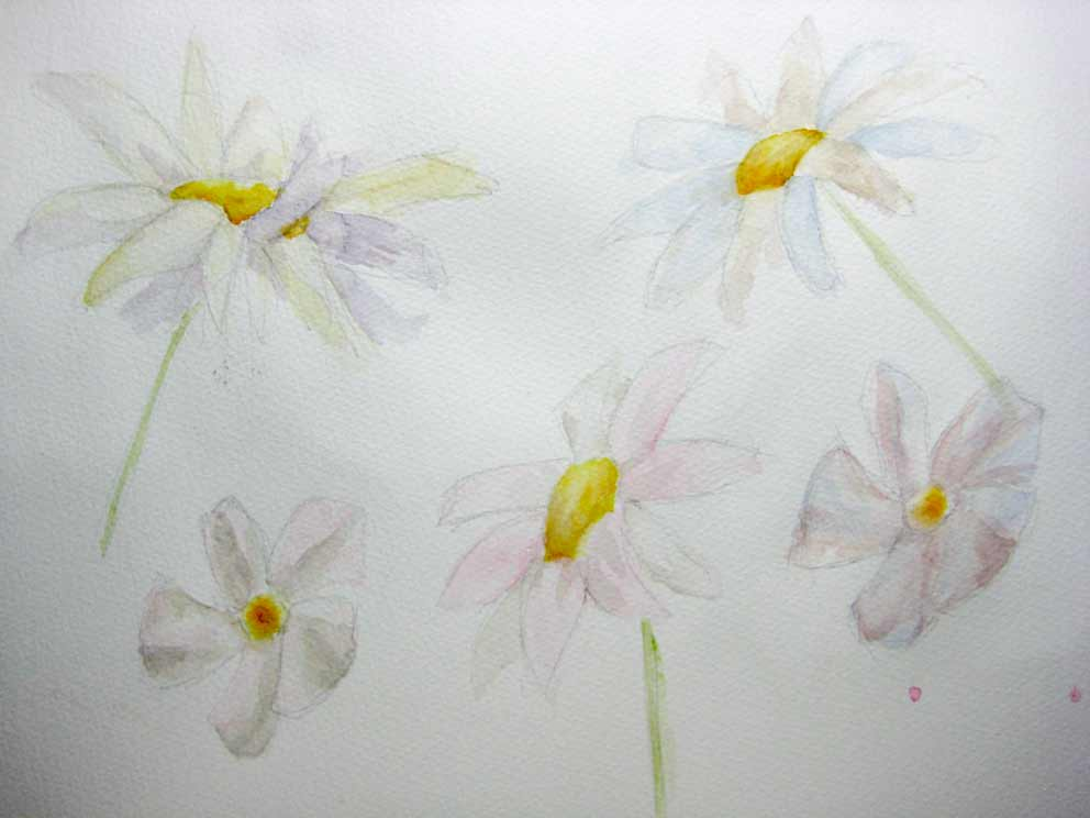 Pale Whites, Complementary Shadows (Watercolour)